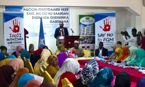 Somalia's attorney general at the Zero Tolerance to FGM meeting in Mogadishu 27 July 2016. Photograph: Amisom/Ifrah Foundation
