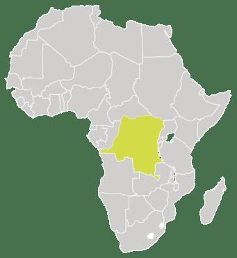 SFVS-Democratic-Republic-of-Congo